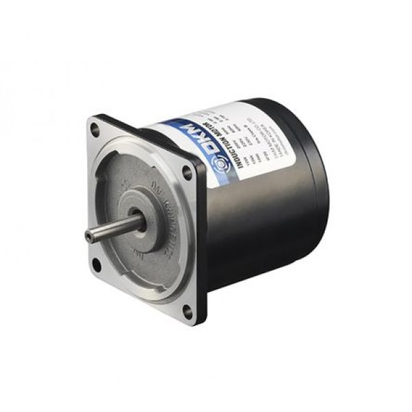DKM 6IDGE-6G Reversible Induction AC Motor 6W 1 Phase