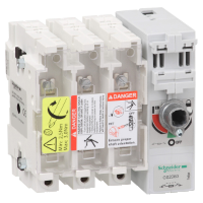 Schneider GS2DB3 3P Fused Isolator Switch
